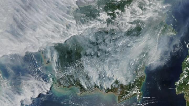 Satelit NASA Potret Karhutla Indonesia, Begini Kondisinya
