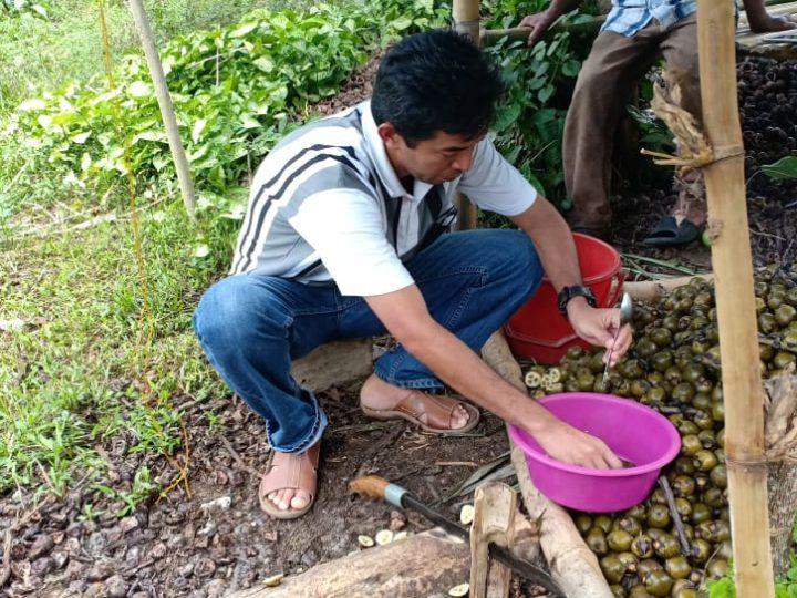 Dosen Untad Latih Kelompok Tani Bakubakulu Manfaatkan Hasil Hutan Bukan Kayu